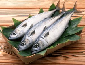 オメガ3脂肪酸を含む青魚