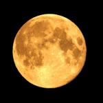 満月の別名の望月